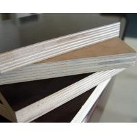 factory price 18mm film faced plywood poplar/birch plywood