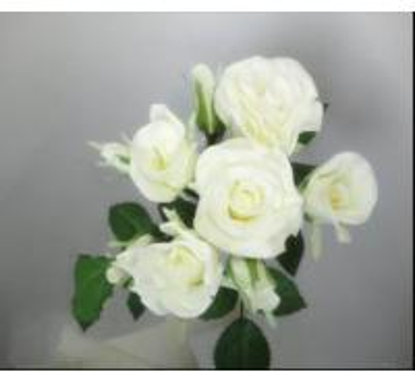 Cheap White Rose Bundle for sale