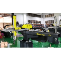 China Euromap 12 Middle Scale 3 Servo Axis Traverse Robot on sale