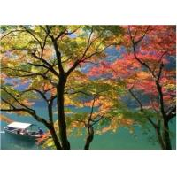 China waterproof front printing backlit PET film on sale