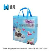 Best Non-woven cooler bag Eco Heat Seal Ultrasonic PP Non Woven Fabric Laminated Shopping Carry Bag wholesale