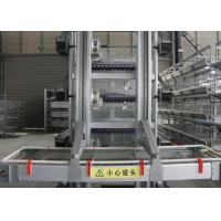 Best High Efficiency Automatic Egg Collection System / Egg Farm Machinery wholesale