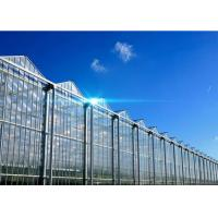 Best Hollow Glass Style Agricultural Greenhouse With Hot Galvanized Steel Frame wholesale