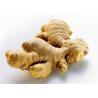 Buy cheap 2016 New Fresh China Yellow Color Ginger Export to Chittagong, Bangladesh, from wholesalers