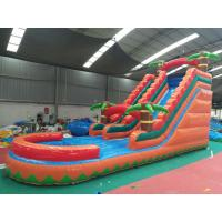 China Jungle Palm Tree Inflatable Backyard Water Slide Outdoor  For Playground on sale