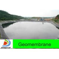 China Customized Product 1.5mm Hdpe Geomembrane (Supplier) on sale