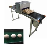 China High Efficient Eggs Inkjet Coding Equipment For Expiration Date / Batch Number on sale