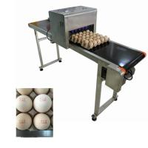China Egg Jet Coding Machine / Industrial Inkjet Coding PrinterFor Expiration Date on sale