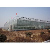 Best Commercial Glass Greenhouse , Hydroponic Greenhouse With Climate Control System wholesale