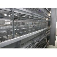 Hot Galvanized Automatic Egg Collection Machine 15-20 Years Lifespan