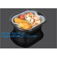 Best Factory Direct Lid Plastic Lunch Box Clear Food Container,Keep Fresh Crisper Food Box,Fresh Boxpp packaging disposable c wholesale