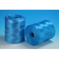 Best 1 - 5 Mm 1 / 2 Strand Fibrillated Polypropylene Twisted Twine Rope For Agriculture wholesale