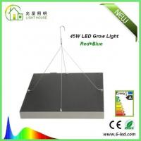 Best Energy Saving Waterproof LED Plant Grow Lights / Hydroponic LED Grow Lights 3W - 120W wholesale