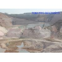 Cheap Well Drilling Mud and Civil Engineering Granular Bentonite Clay Water Absorption for sale