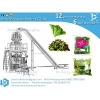 Best Leafy  greens baby leaf salad packing machine wholesale