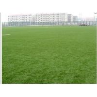 Best Bicolor Field Football Artificial Grass Soccer 50mm , Yarn Count 9800Dtex wholesale