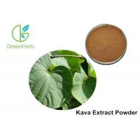 China Piper Methysticum Herbal Plant Extract Analgesic Botanical Extract 30% on sale