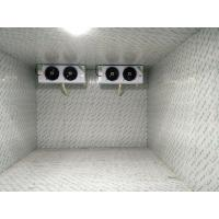 -18 Degree Walk In Cold Ice Storage Room With Swing / Sliding Door