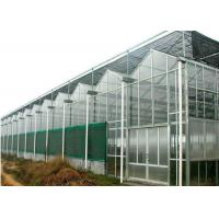 Best Agricultural Polycarbonate Sheet Greenhouse Double Arch Multi Span Structure Frame wholesale