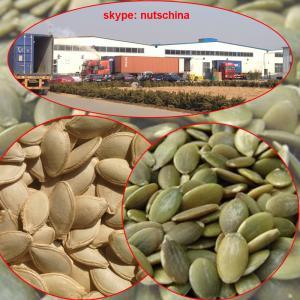 China shine skin pumpkin seeds on sale