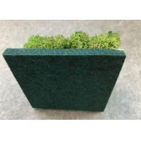 China Green Plant Decorative Acoustic Panels Soundproofing Light Weight Easy To Dust on sale