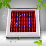 Best 150W LED Grow Light 150*1W wholesale