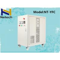 Best RO Water Purifier Ozone System / Ozone Generator Water Purification 5g - 30g wholesale
