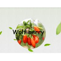 China Dried fruit :Goji berry(wolfberry) 280 grain,350grain and 550Grain on sale