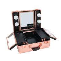 Best Easy Organizing Cosmetic Beauty Case Impact Resistance For Makeup Artists wholesale