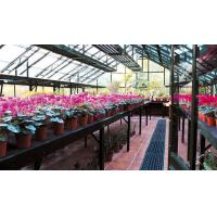 Best 4*8ft close to a wall aluminum greenhouse wholesale