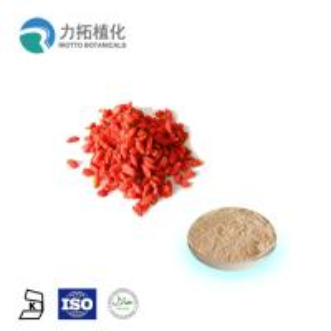 Best Organic Goji Herbal Extracts / Plant Powder  Promote Immunity Lycium Barbarum wholesale