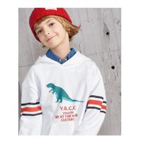 Best New Model Latest Design Boys High Quality Pullover Hoodie with Dino Saur PrintedAge 4-10 wholesale
