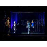 Buy cheap 3D Projection System 3D Holographic Display Hologram Stage Show Pepper Ghost from wholesalers