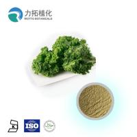 Best Brassica Oleracea Organic Plant Powder Light Green Fine Powder Anti-Inflammatory wholesale