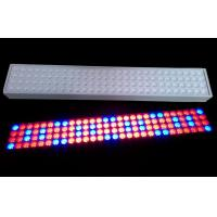 Best 50 W SMD LED Tube Grow Lights 900mm Length With 50~60Hz Frequency wholesale