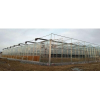 Best Multi Span Modern Plant Construction Agricultural Greenhouse wholesale