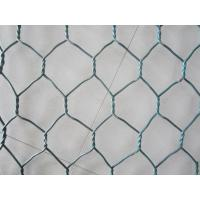 China 1/2 - 2 galvanized iron wire mesh plain screen mesh, low carbon steel for Filter on sale