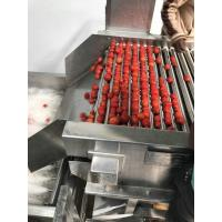 China Low Energy Tomato Processing Machine Forced Circulation Evaporator 200KG Weight on sale