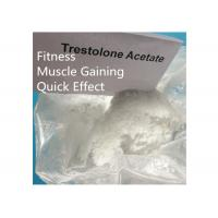 Buy cheap Trestolone Acetate 6157-87-5 Muscle Building Strong Effects USP Standard from wholesalers