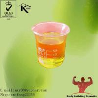 test enanthate equipoise cycle results