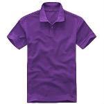 Best Purple Polo Shirt (LC-234) wholesale