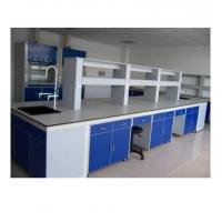 China Steel Structure Medical Lab Table With Cabinet Storage Epoxy Resin Powder Coated on sale
