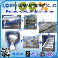 Best Fruit and vegetable process line made in Jinan Leader Machinery wholesale