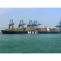 Best LCL FCL Ocean Freight Services Direct Logistics From Shenzhen To Tunis / RADES wholesale