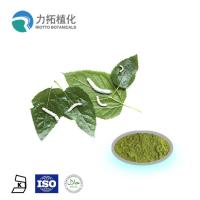 Best Mulberry  leaf extract powder / DNJ Weight loss activities against a-glycosidase wholesale
