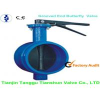 China Actuated Grooved End Manual Gear Operated Butterfly Valve With Linling Seat on sale