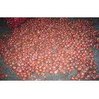 Best Pure Natural Red / Yellow Onion Shallot Contains Iron Magnesium Copper wholesale
