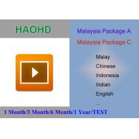 China Malaysia package HaoHD A and C iptv Account Malay Singapore indian indonesia live tv channels for android Device on sale