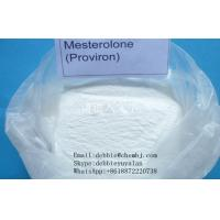 Best Male Hormone Powder Mesterolone Androgen Proviron  1424-00-6 For Musclebuilding wholesale