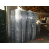 China Galvanized Welded Wire Mesh Hot-Dipped Zinc Plating Iron Wire 20 / 22 BWG on sale